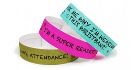 School Reward Tyvek Wristbands